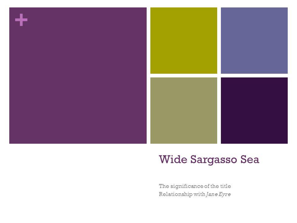 Wide sargasso sea essay