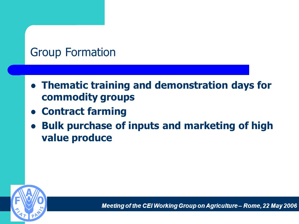 Meeting of the CEI Working Group on Agriculture – Rome, 22 May 2006 Group Formation Thematic training and demonstration days for commodity groups Contract farming Bulk purchase of inputs and marketing of high value produce