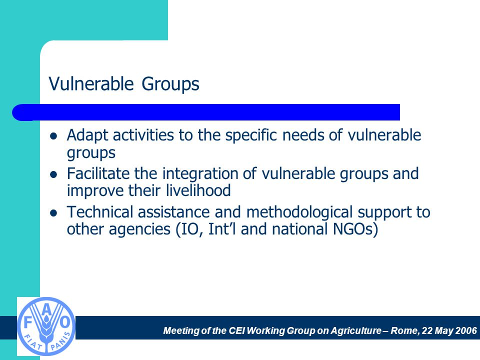 Meeting of the CEI Working Group on Agriculture – Rome, 22 May 2006 Vulnerable Groups Adapt activities to the specific needs of vulnerable groups Facilitate the integration of vulnerable groups and improve their livelihood Technical assistance and methodological support to other agencies (IO, Int'l and national NGOs)