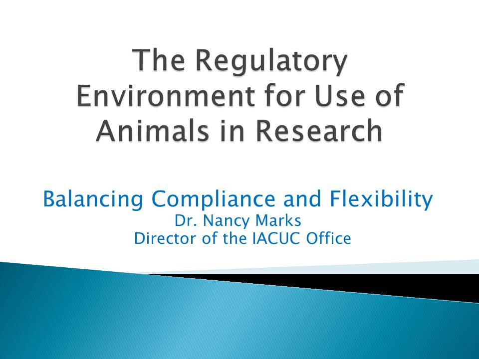Balancing Compliance and Flexibility Dr. Nancy Marks Director of the IACUC Office