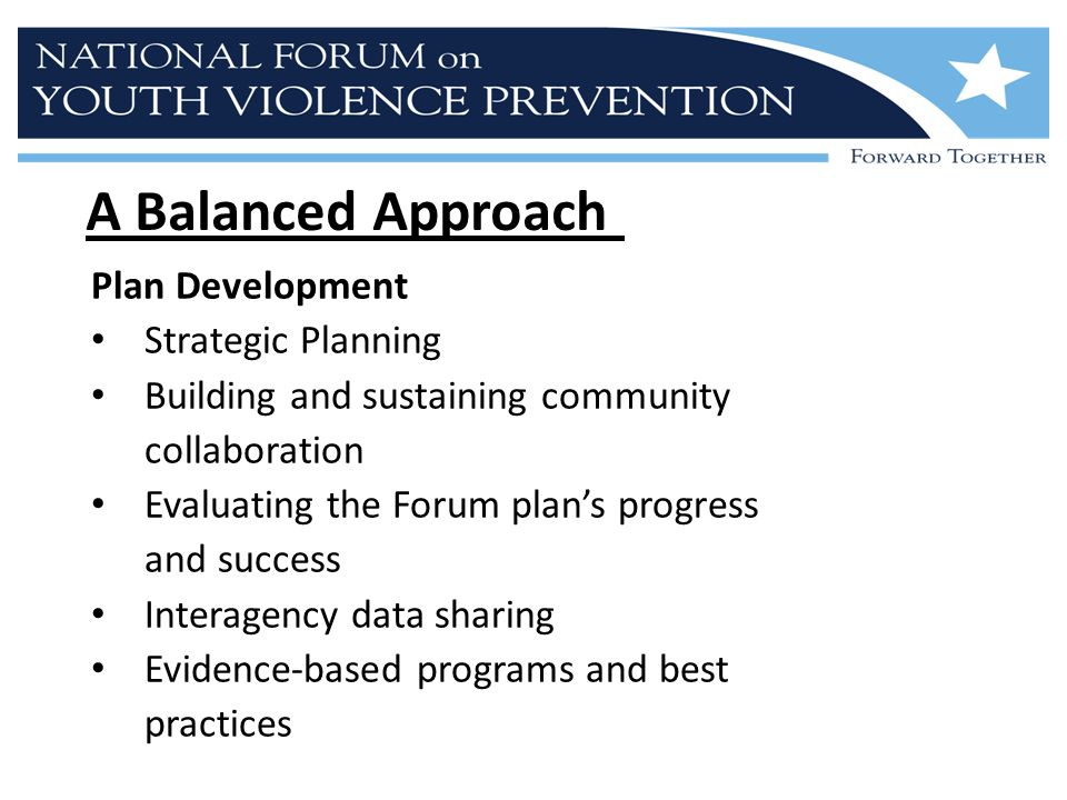 A Balanced Approach Plan Development Strategic Planning Building and sustaining community collaboration Evaluating the Forum plan's progress and success Interagency data sharing Evidence-based programs and best practices