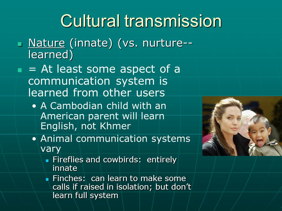 Cultural transmission Nature (innate) (vs. nurture-- learned) Nature (innate) (vs.