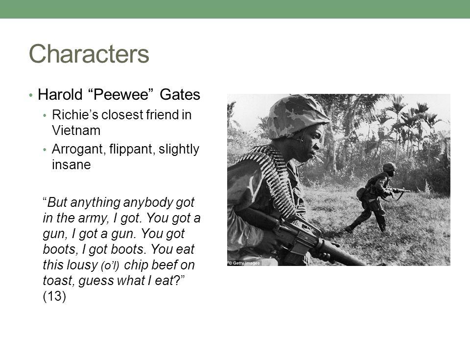 Mem Gowdie Character Profile Essay - image 4
