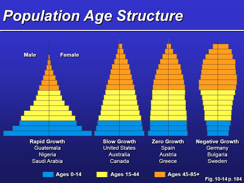 Ages 0-14 Ages Ages Rapid Growth Guatemala Nigeria Saudi Arabia Rapid Growth Guatemala Nigeria Saudi Arabia Slow Growth United States Australia Canada Slow Growth United States Australia Canada Male Female Zero Growth Spain Austria Greece Zero Growth Spain Austria Greece Negative Growth Germany Bulgaria Sweden Negative Growth Germany Bulgaria Sweden Population Age Structure Fig.