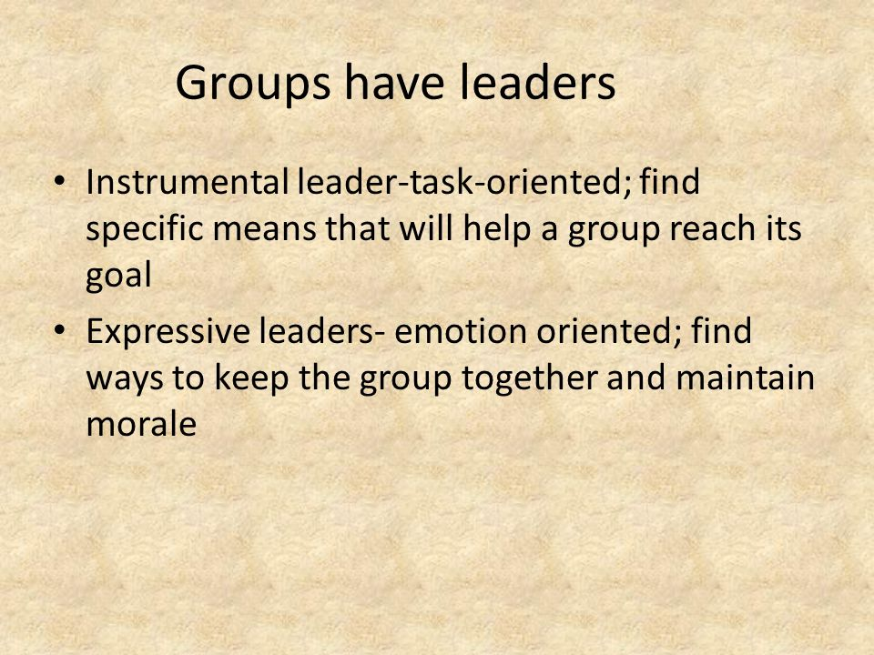 Groups have leaders Instrumental leader-task-oriented; find specific means that will help a group reach its goal Expressive leaders- emotion oriented; find ways to keep the group together and maintain morale
