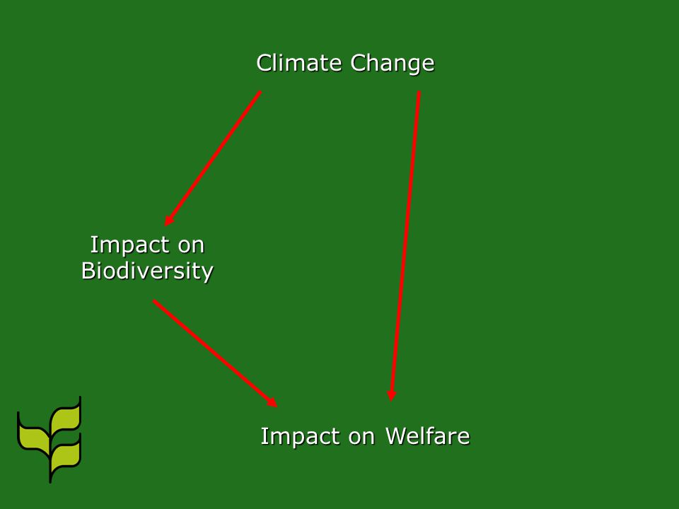 Climate Change Impact on Biodiversity Impact on Welfare