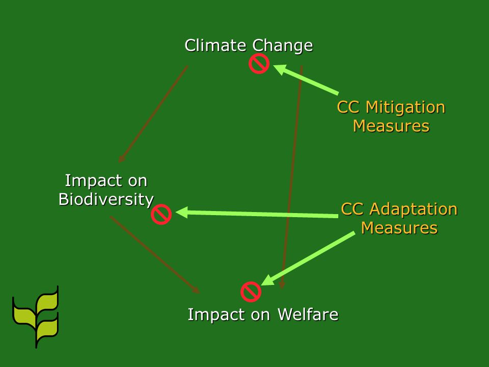 Climate Change Impact on Biodiversity Impact on Welfare CC Mitigation Measures CC Adaptation Measures