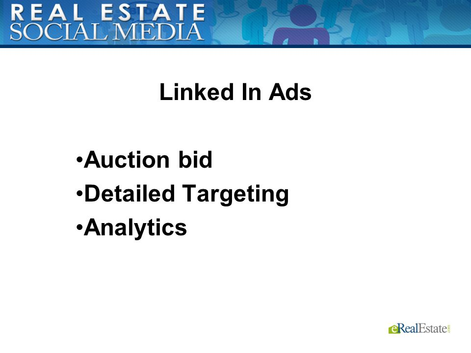 Linked In Ads Auction bid Detailed Targeting Analytics