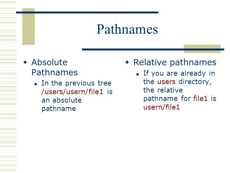Pathnames  Absolute Pathnames In the previous tree /users/usern/file1 is an absolute pathname  Relative pathnames If you are already in the users directory, the relative pathname for file1 is usern/file1