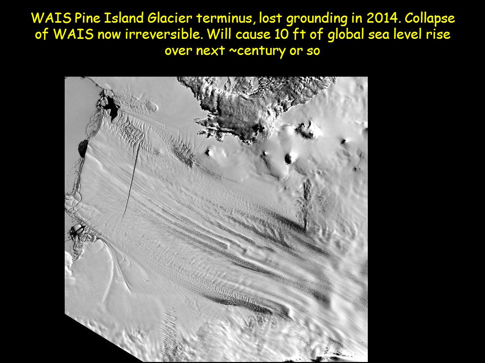 WAIS Pine Island Glacier terminus, lost grounding in 2014.