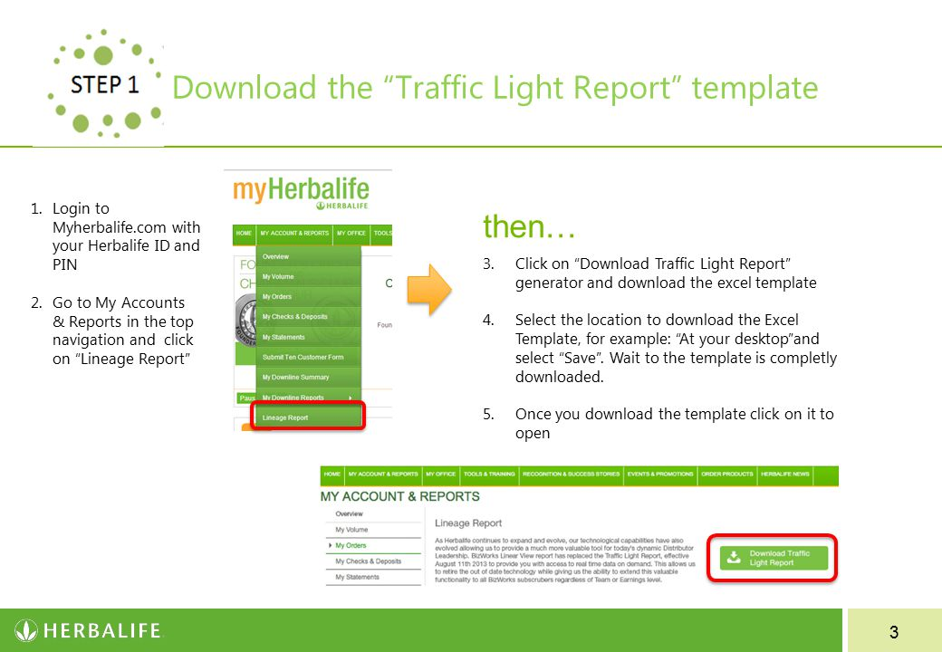3 Download the Traffic Light Report template 1.Login to Myherbalife.com with your Herbalife ID and PIN 2.Go to My Accounts & Reports in the top navigation and click on Lineage Report 3.Click on Download Traffic Light Report generator and download the excel template 4.Select the location to download the Excel Template, for example: At your desktop and select Save .
