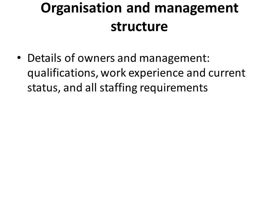 Business plan management summary