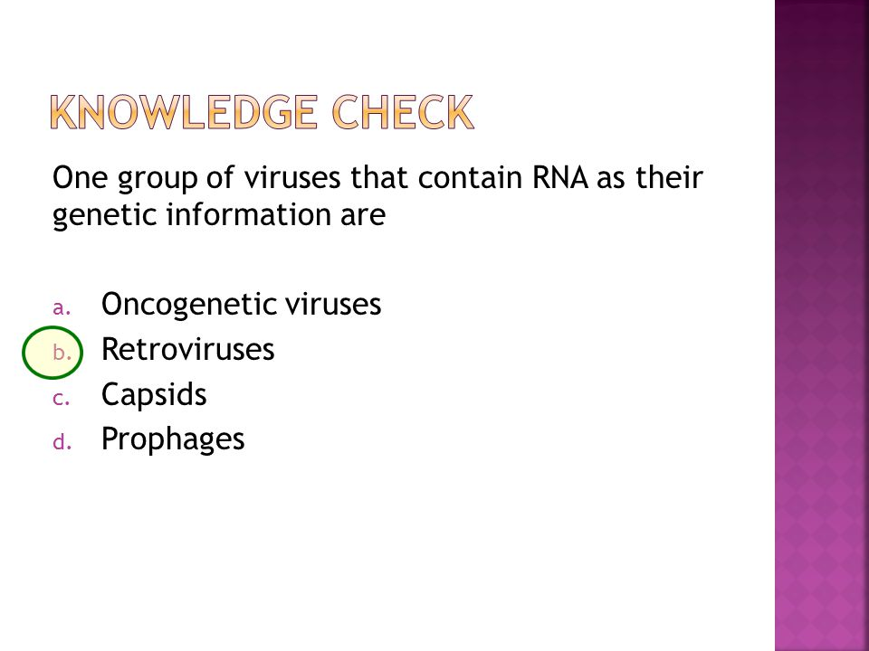 One group of viruses that contain RNA as their genetic information are a.