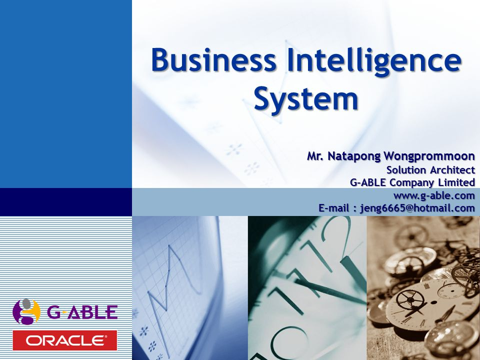LOGO Business Intelligence System Mr.