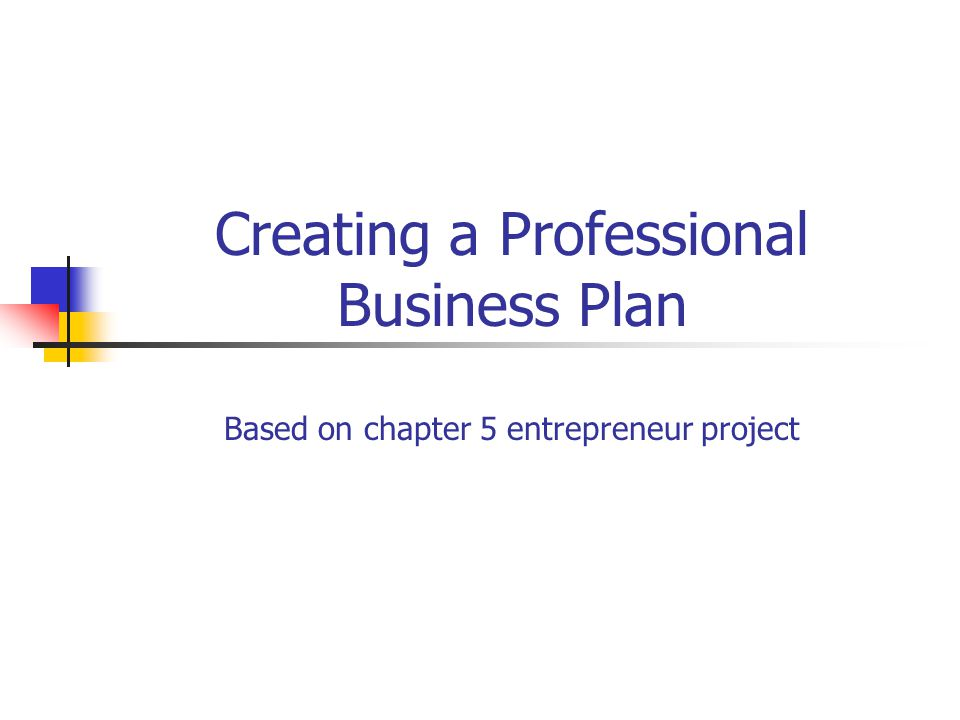 Creating a Professional Business Plan Based on chapter 5 – Professional Business Plan