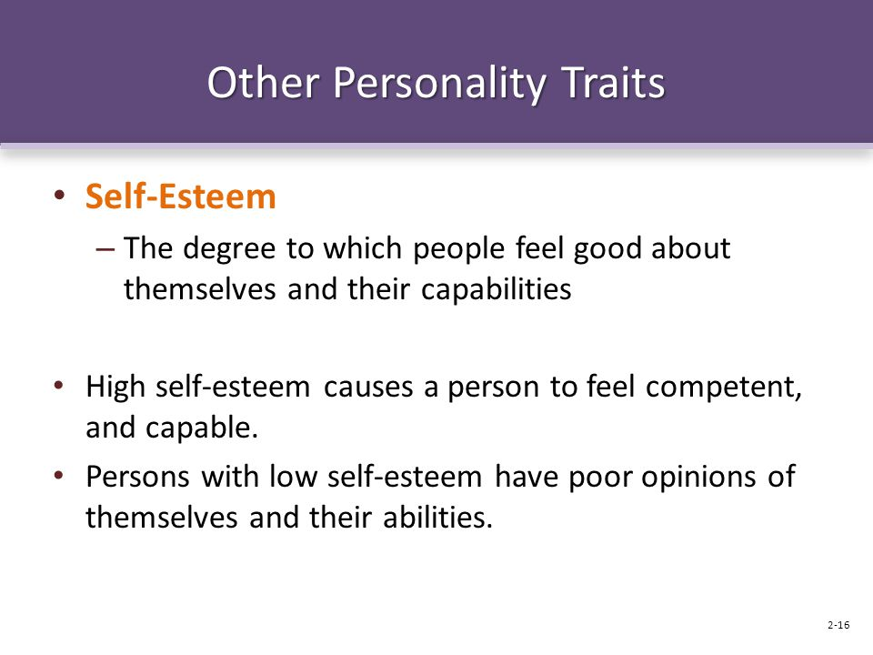 Other Personality Traits Self-Esteem – The degree to which people feel good about themselves and their capabilities High self-esteem causes a person t