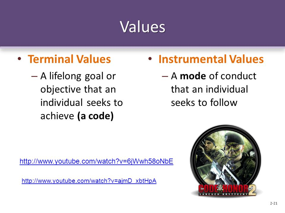 Values Terminal Values – A lifelong goal or objective that an individual seeks to achieve (a code) Instrumental Values – A mode of conduct that an ind