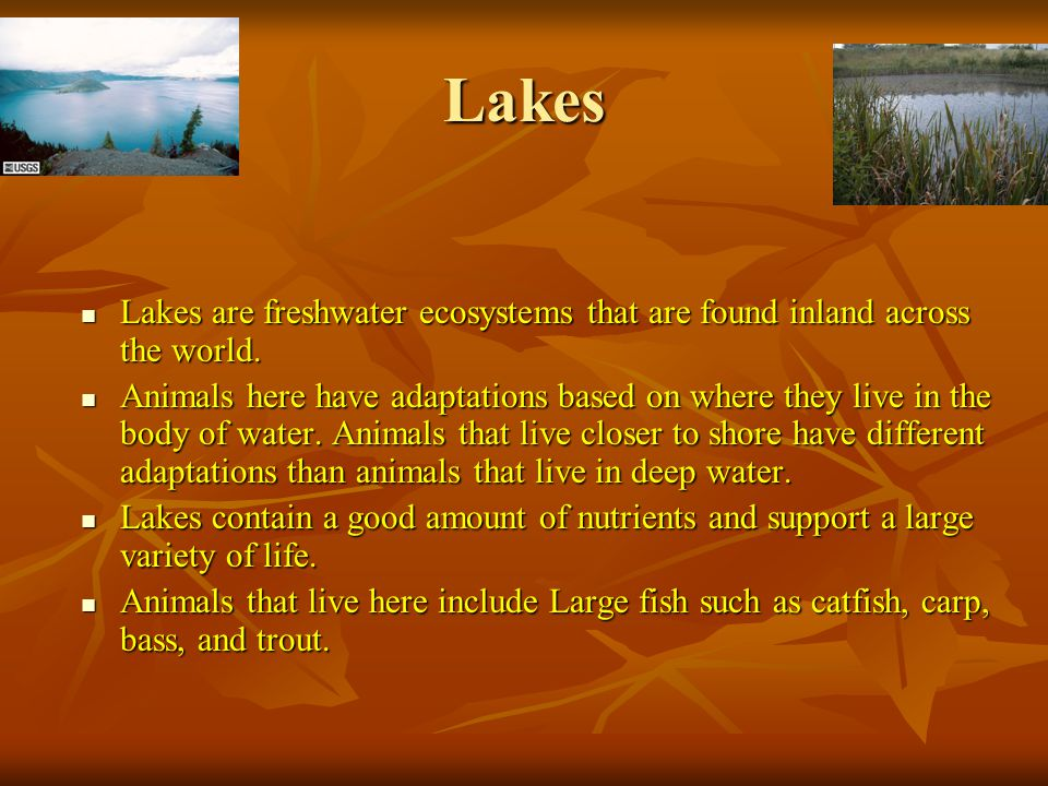 Lakes Lakes are freshwater ecosystems that are found inland across the world.