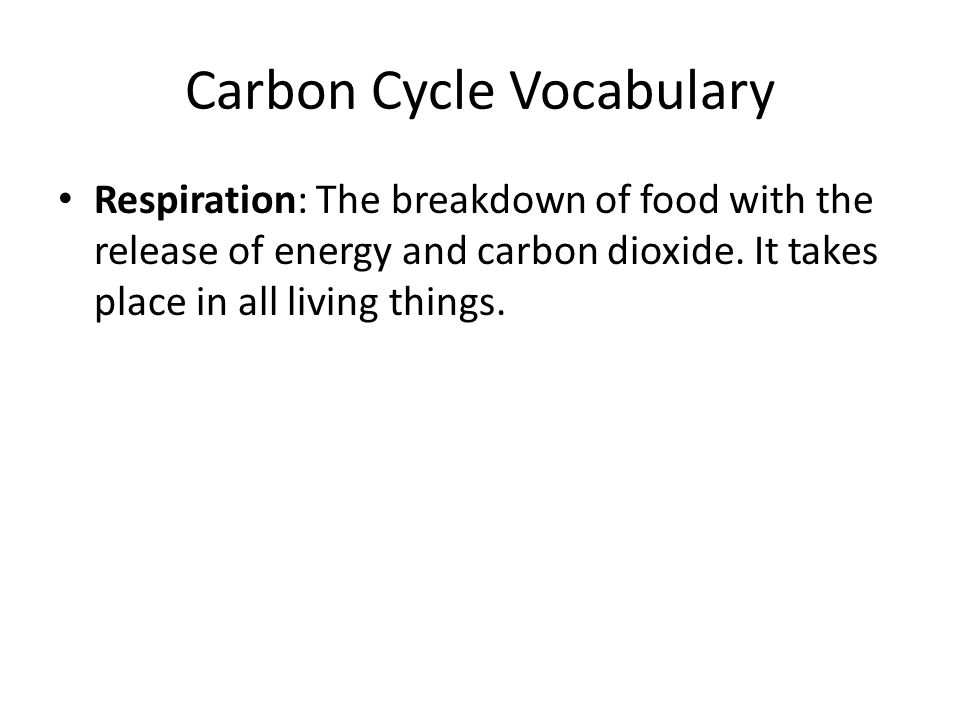 Respiration: The breakdown of food with the release of energy and carbon dioxide.