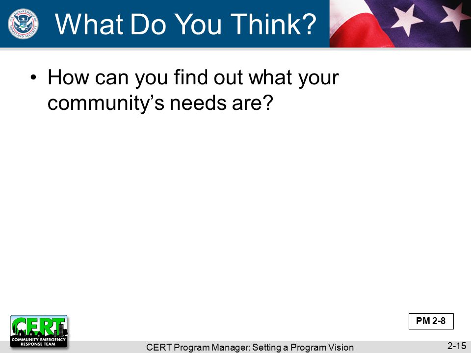 CERT Program Manager: Setting a Program Vision 2-15 What Do You Think.