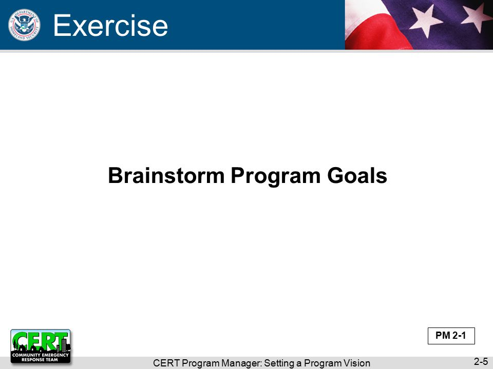 CERT Program Manager: Setting a Program Vision 2-5 Brainstorm Program Goals Exercise PM 2-1