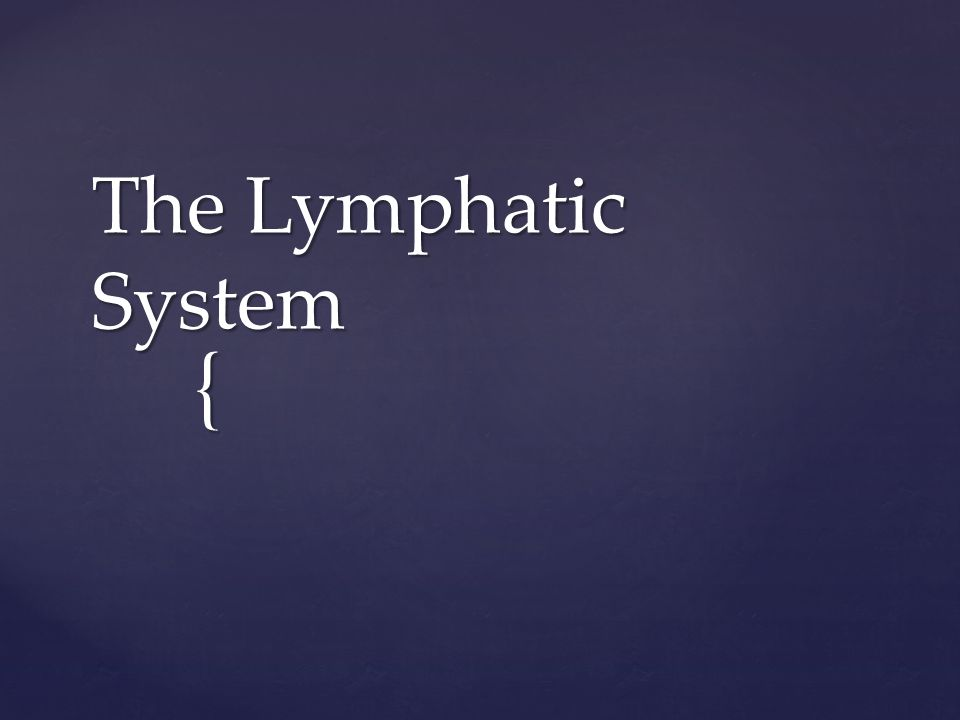 { The Lymphatic System