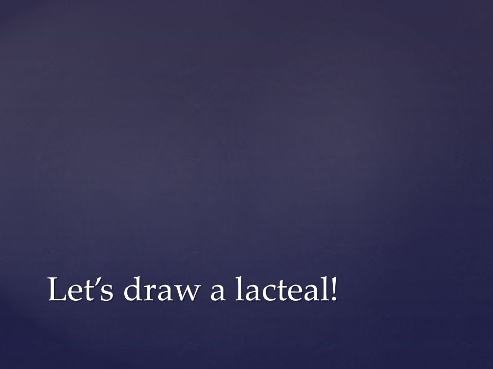 Let's draw a lacteal!