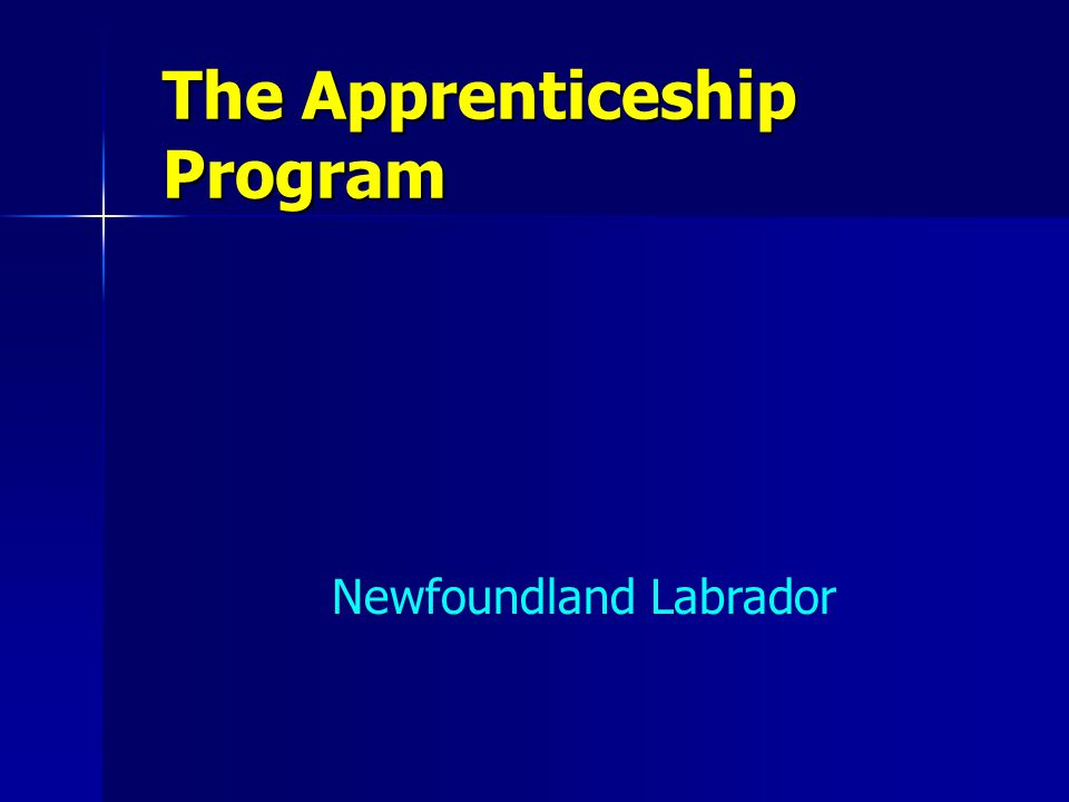 The Apprenticeship Program Newfoundland Labrador