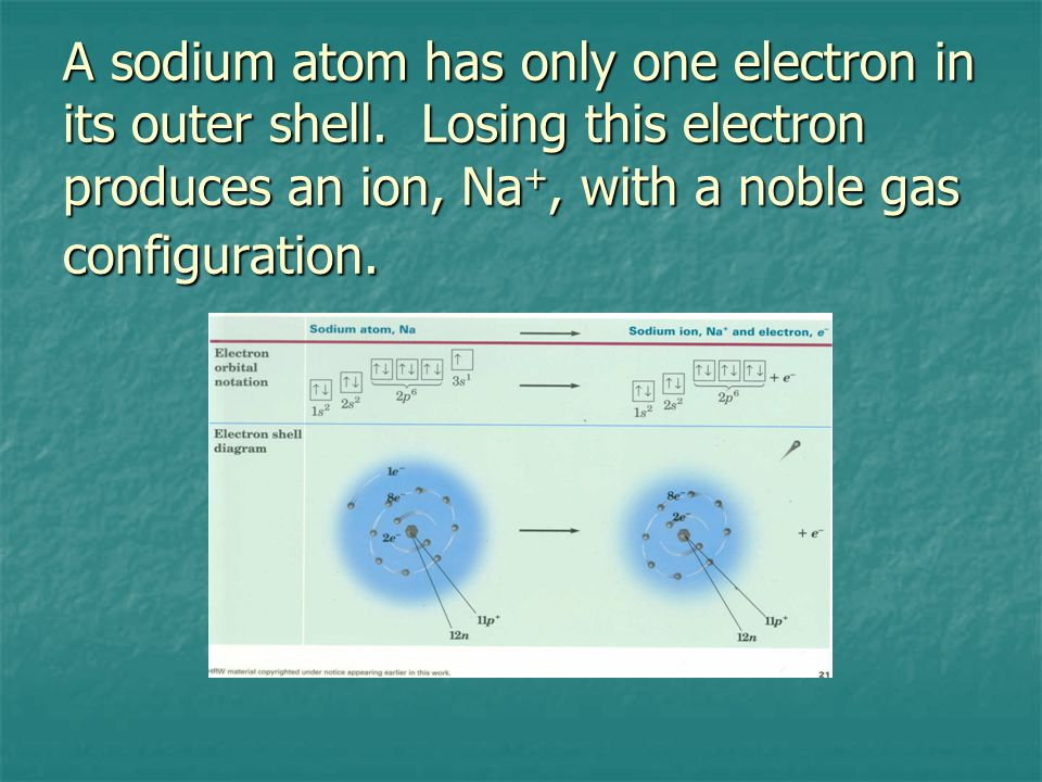 A sodium atom has only one electron in its outer shell.