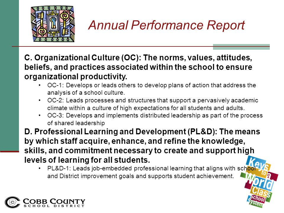 Annual Performance Report B.