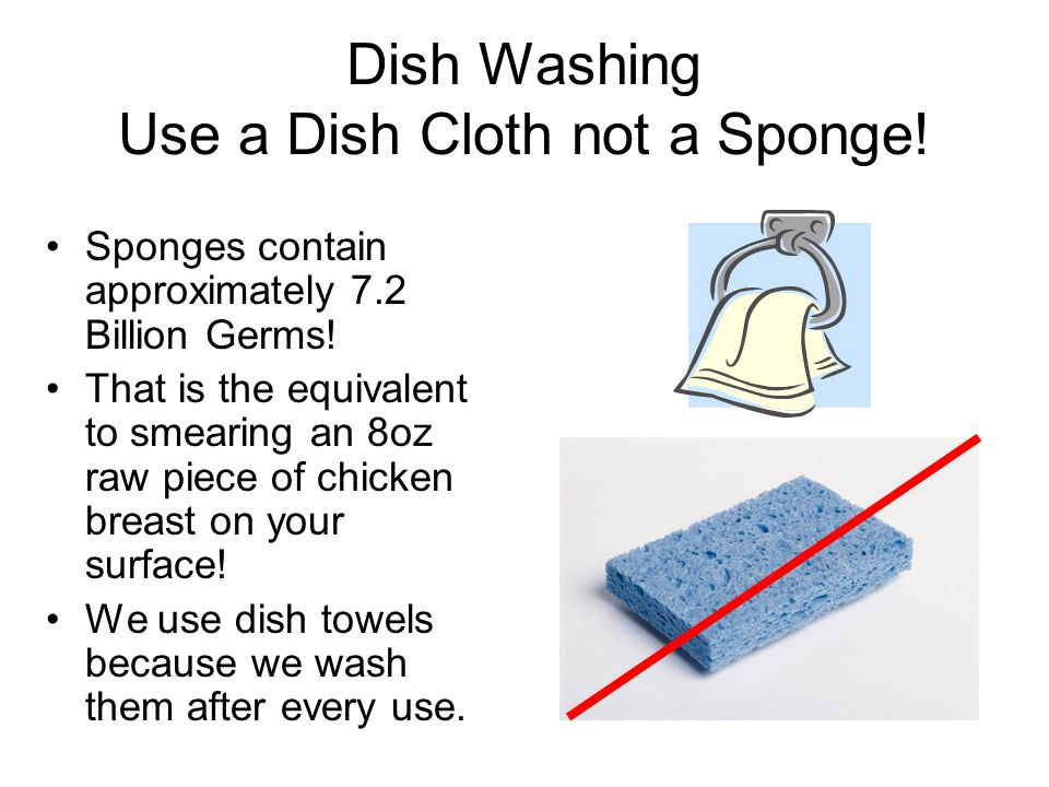 Dish Washing Use a Dish Cloth not a Sponge. Sponges contain approximately 7.2 Billion Germs.