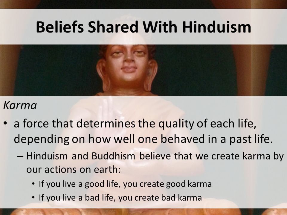 Beliefs Shared With Hinduism Karma a force that determines the quality of each life, depending on how well one behaved in a past life.