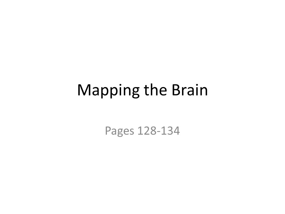 Mapping the Brain Pages