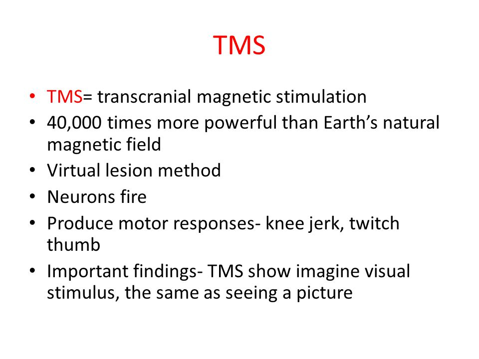 TMS TMS= transcranial magnetic stimulation 40,000 times more powerful than Earth's natural magnetic field Virtual lesion method Neurons fire Produce motor responses- knee jerk, twitch thumb Important findings- TMS show imagine visual stimulus, the same as seeing a picture