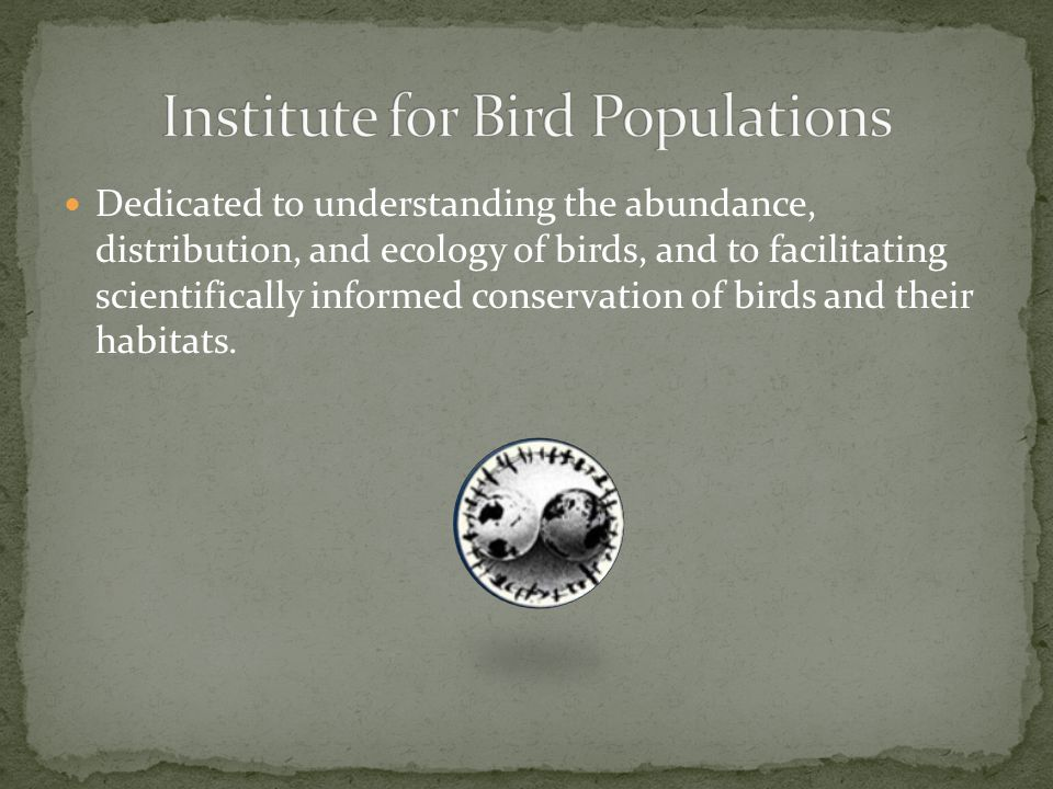 Dedicated to understanding the abundance, distribution, and ecology of birds, and to facilitating scientifically informed conservation of birds and their habitats.