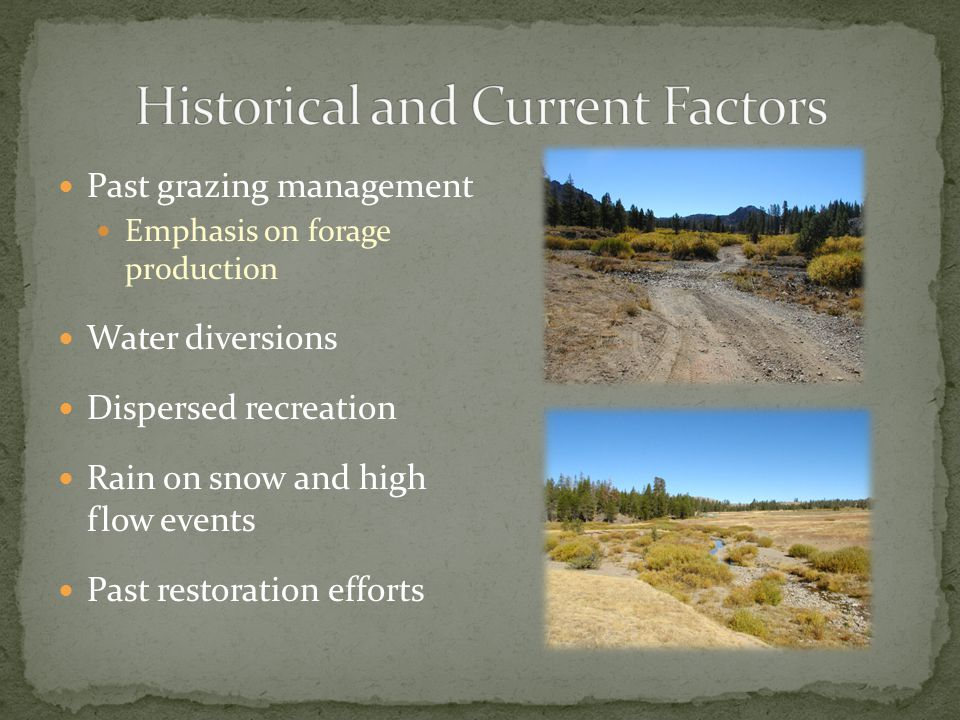 Past grazing management Emphasis on forage production Water diversions Dispersed recreation Rain on snow and high flow events Past restoration efforts