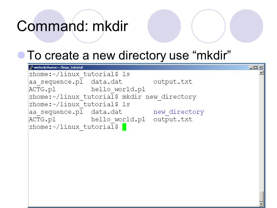 Command: mkdir To create a new directory use mkdir
