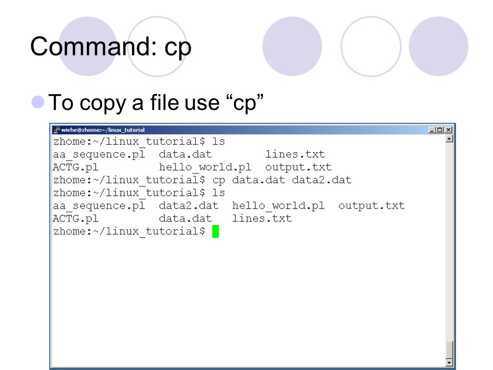 Command: cp To copy a file use cp