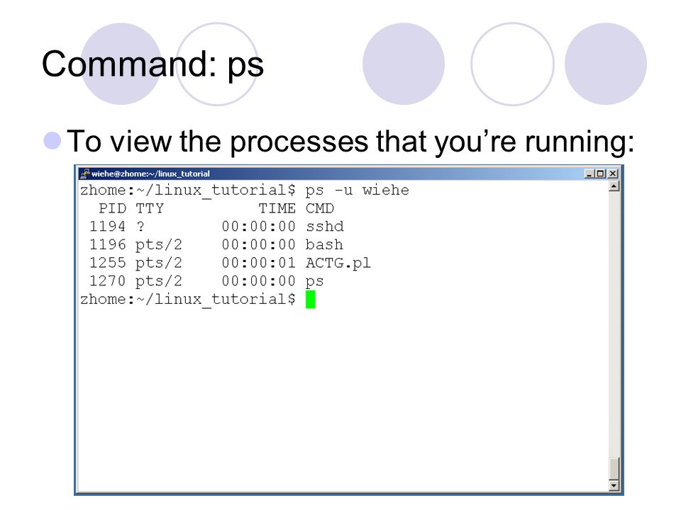 Command: ps To view the processes that you're running: