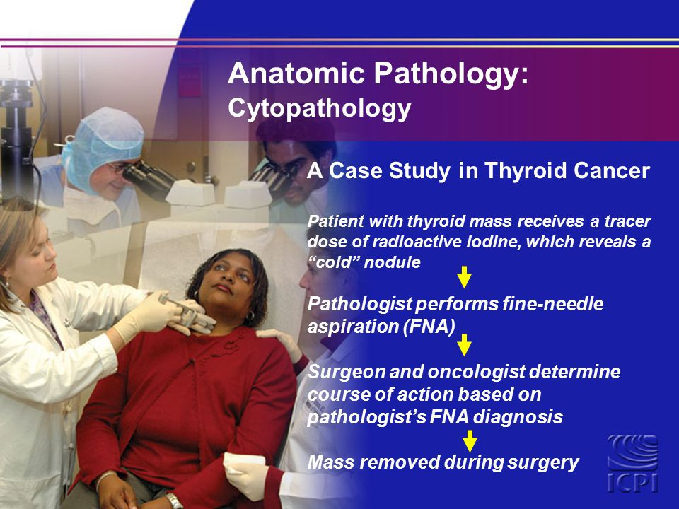 What type of undergraduate degree should someone get to be a clinical/ anatomical pathologist?