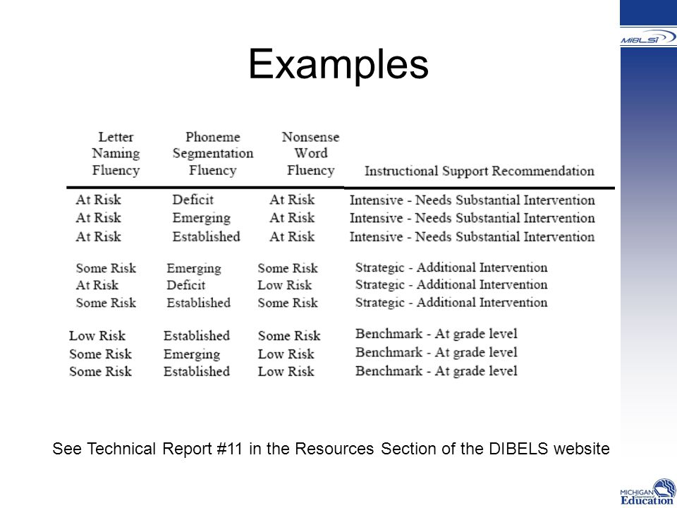 Examples See Technical Report #11 in the Resources Section of the DIBELS website