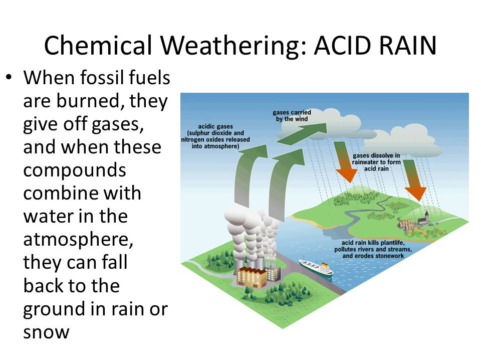 the causes of acid rain and Forests it is thought that acid rain can cause trees to grow more slowly or even to die but scientists have found that it is not the only cause.