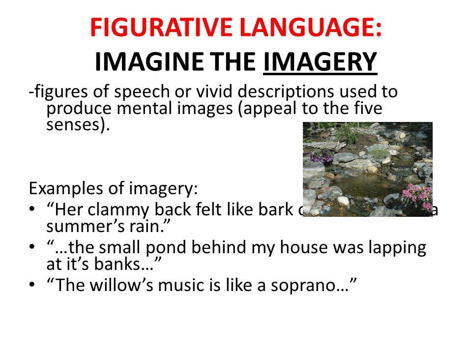 Literary Imagery Examples 34151 | RIMEDIA