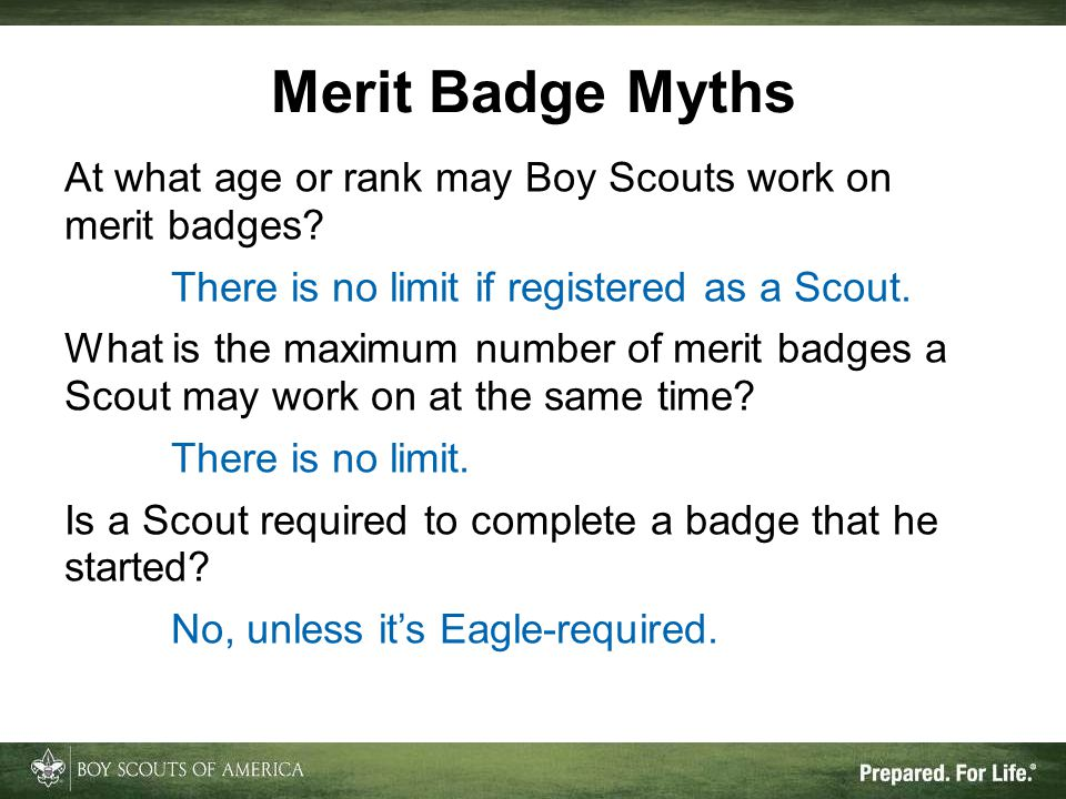 At what age or rank may Boy Scouts work on merit badges.