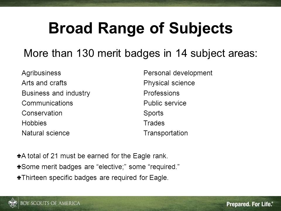 Broad Range of Subjects Agribusiness Arts and crafts Business and industry Communications Conservation Hobbies Natural science Personal development Physical science Professions Public service Sports Trades Transportation More than 130 merit badges in 14 subject areas: A total of 21 must be earned for the Eagle rank.