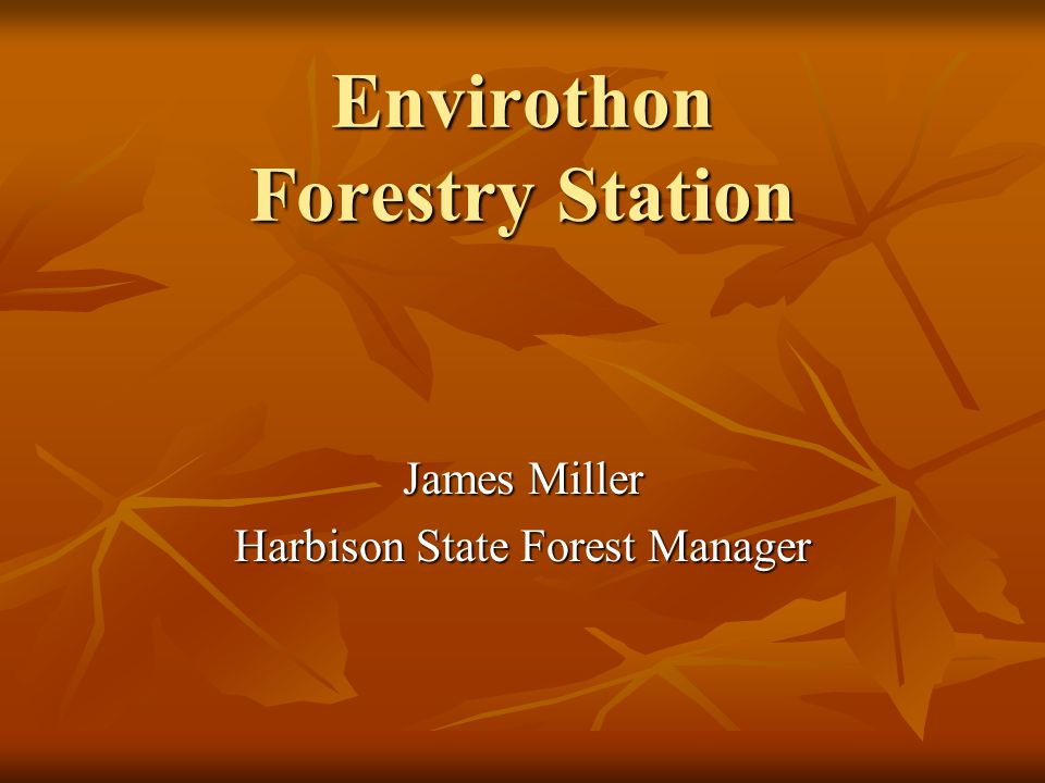 Envirothon Forestry Station James Miller Harbison State Forest Manager