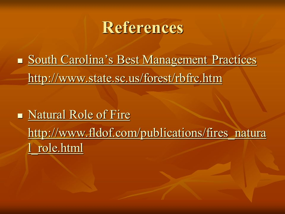 References South Carolina's Best Management Practices South Carolina's Best Management Practices South Carolina's Best Management Practices South Carolina's Best Management Practices   Natural Role of Fire Natural Role of Fire Natural Role of Fire Natural Role of Fire   l_role.html   l_role.html