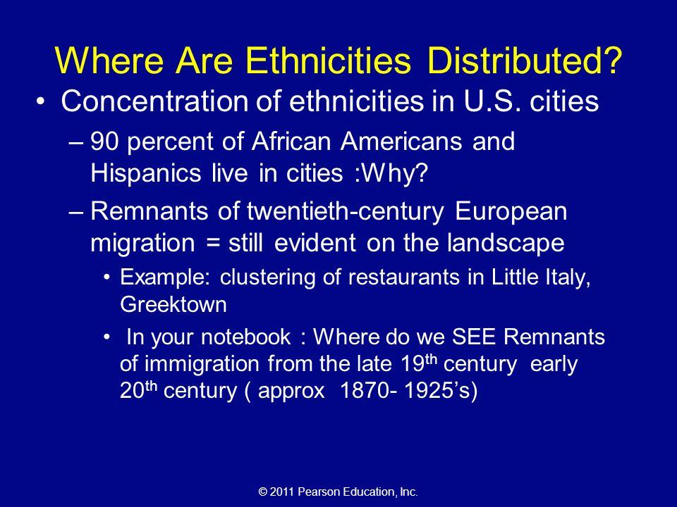 ethnic essay