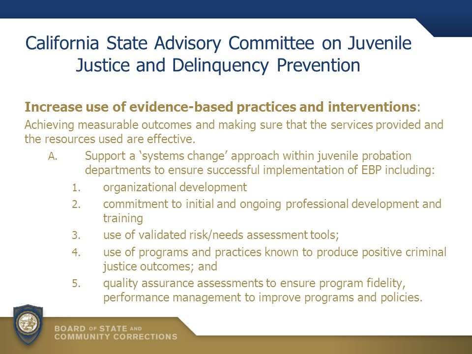 California State Advisory Committee on Juvenile Justice and Delinquency Prevention Increase use of evidence-based practices and interventions: Achieving measurable outcomes and making sure that the services provided and the resources used are effective.