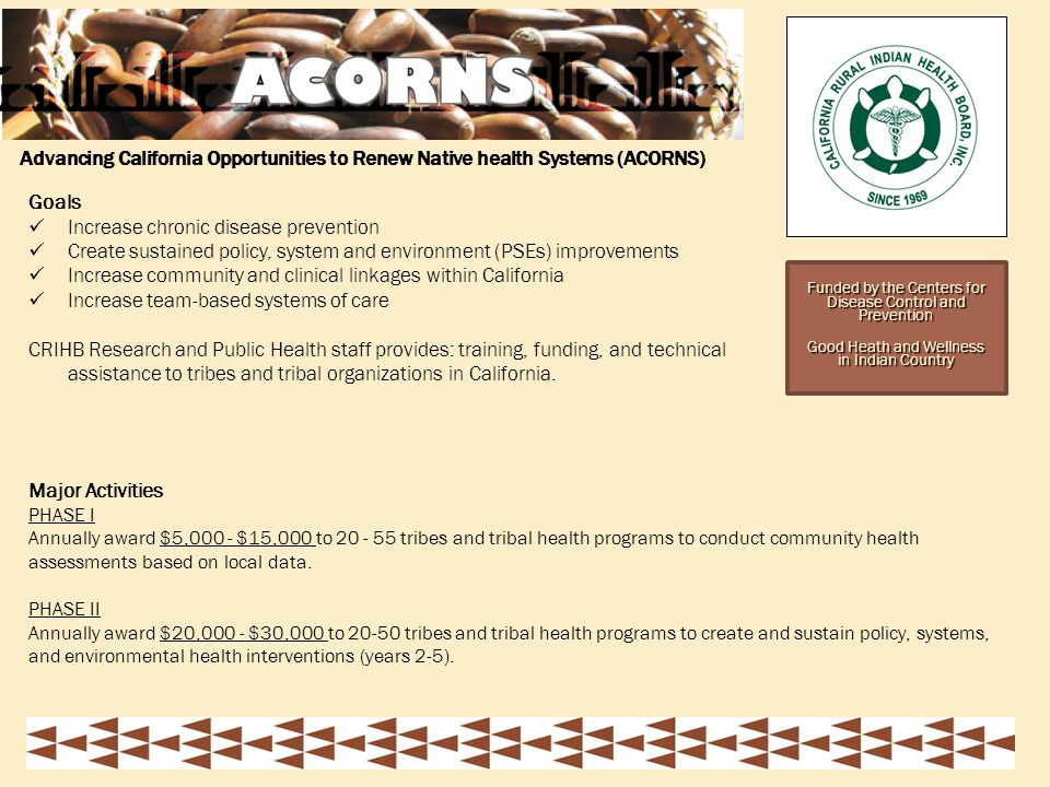 Funded by the Centers for Disease Control and Prevention Good Heath and Wellness in Indian Country Major Activities PHASE I Annually award $5,000 - $15,000 to tribes and tribal health programs to conduct community health assessments based on local data.
